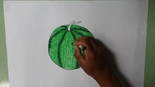 Bé học vẽ : Trái cây bốn mùa. /Baby learn to draw: Four seasons fruit.