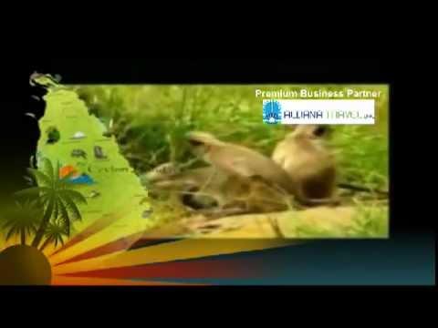 Ceylon Holidays Tunisian Premier Business Partner - ALDANA TRAVEL DMC - 01