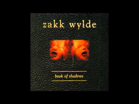 Zakk Wylde - What Youre Looking For