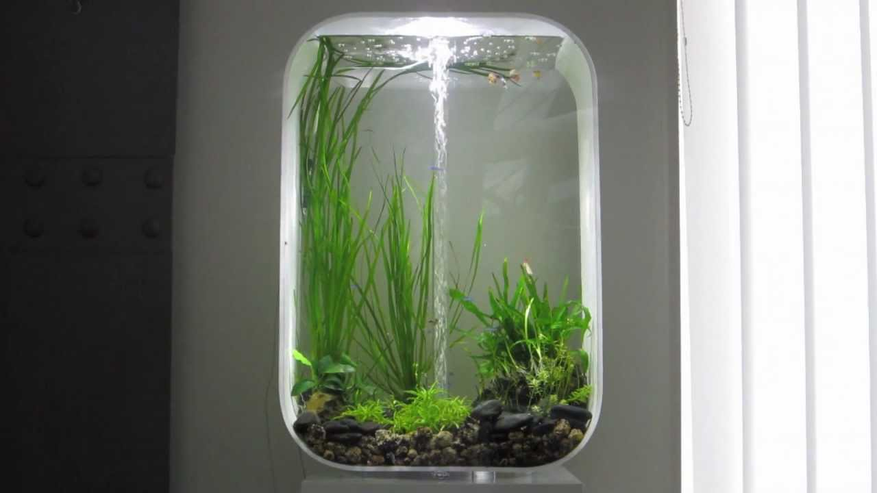 Biorb life 60 aquarium youtube for Decoration aquarium 60 litres
