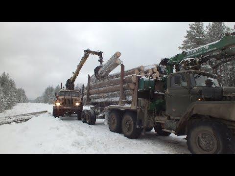 Сутки из жизни водителя Урал-лесовоз