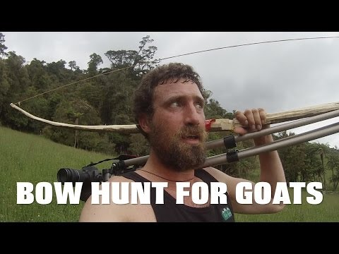 bow hunting goats with home made longbow