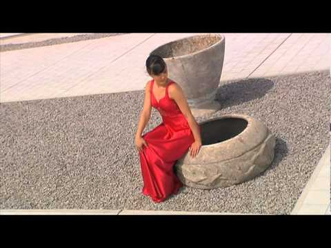 Videobook - Leticia Fernández.mov