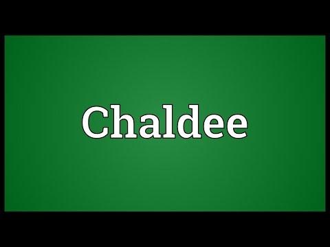 Header of Chaldee