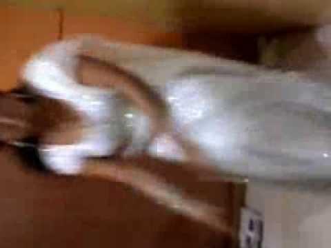 Ajman Thamburu South Indian Night Club Green Room Videos video