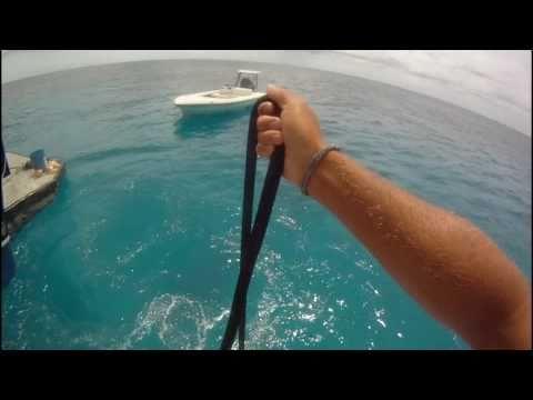 Bull Shark fishing and Spearfishing off Crooked Island Bahamas