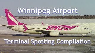 Winnipeg Int'l Airport (YWG) Terminal Plane Spotting Compilation