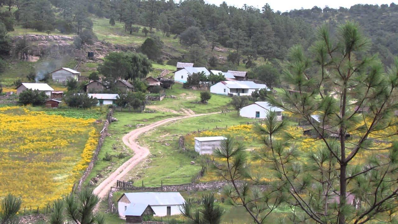 Fotos de la sierra de tepehuanes durango