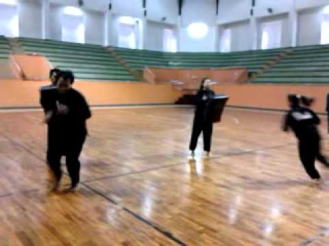 Pencak Silat Training Speed and Timing Image 1