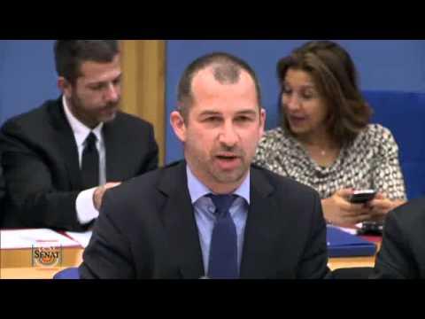 Sénat.fr : Bitcoin et monnaie virtuelle - Propos liminaires des auditionnés