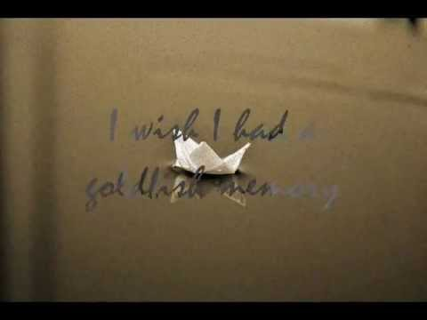 Skinner Box - Goldfish Memory