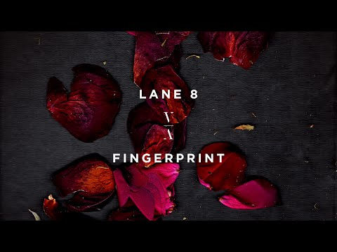 Download Lane 8 - Fingerprint Mp4 baru