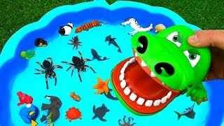Learn Colors With Animals and Sharks in Water Tub Toys Educational Video For Kids