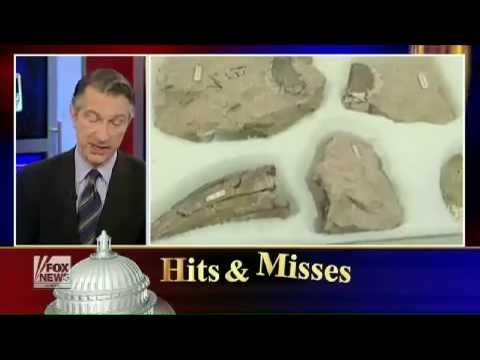 Hits & Misses: A Hit To A New Dinosaur Discovery