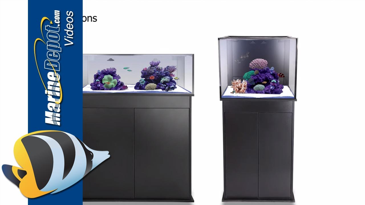 Innovative Marine Nuvo Fusion Micro 30l Amp Mini 40 Aquarium Youtube