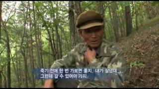연변 조선족 마을의 특별한 명절 (part 2)