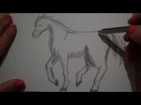 Pferd zeichnen malen Wie zeichnet man ein Pferd - to draw a horse - Как нарисовать лошадь КОНЯ - 画马