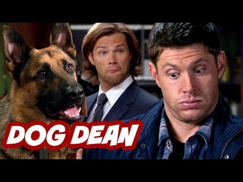 Supernatural Season 9 Episode 5 Review - Dog Dean Afternoon