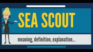 What is SEA SCOUT? What does SEA SCOUT mean? SEA SCOUT meaning, definition & explanation