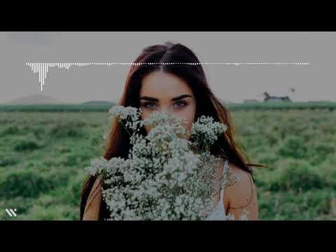 Download Aku Wanita Mu - Jihan Audy  Audio s Spectrum  | Woodie  version Mp4 baru