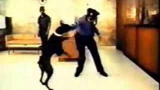 The Doberman Gang preview