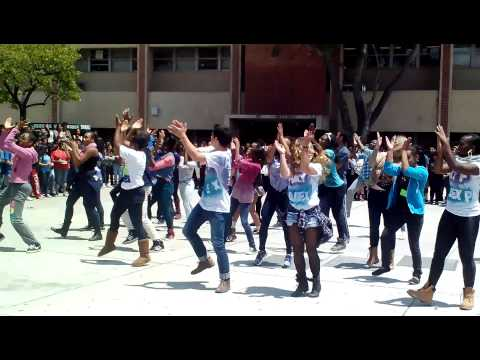 Hamilton High School Flash Mob