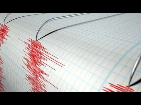 Magnitude 7 3 Earthquake Hits Off Coast Of Vanuatu USGS