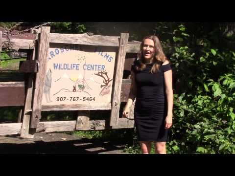 Marta Keller visiting Kroschel Films Wildlife Center, Alaska