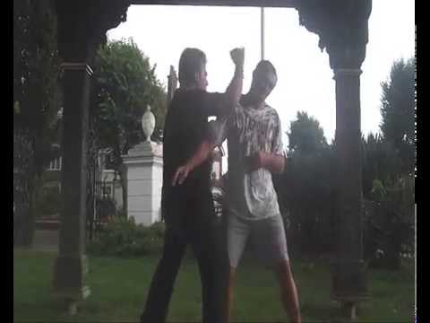 Revolutionary Jeet Kune Do Training Part 1 Image 1