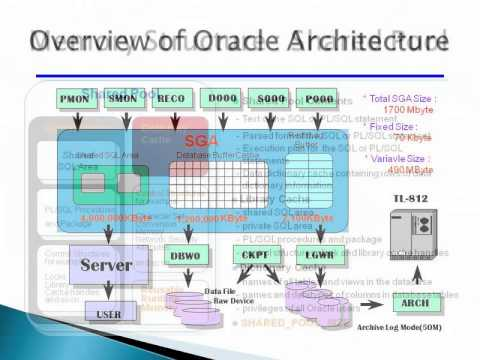 Oracle Architecture and DBMS Concepts