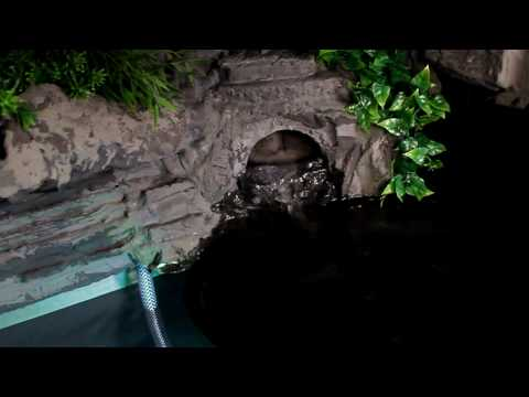 Terrarium watergrot test