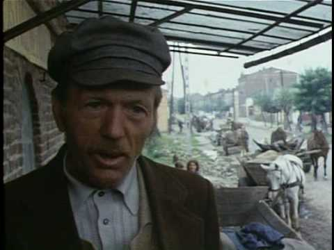 Polish tradesman (1985) on Jews