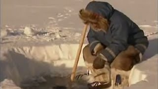 Arctic Fishing - Ray Mears World of Survival - BBC