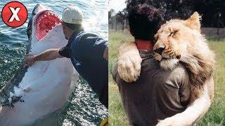 As mais estranhas amizades entre pessoas e animais