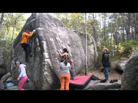 The Art of Whaling - Fontainebleau Selected Climbs