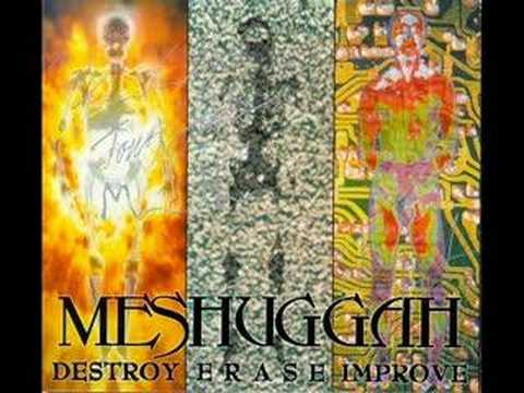 18. Meshuggah - Destroy Erase Improve