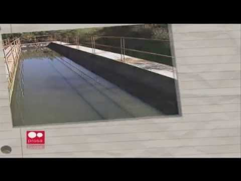 Recursos naturais e o crescimento desordenado de Caxias do Sul - Jornal Futura - Canal Futura