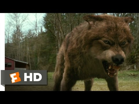 The Twilight Saga: New Moon (7/12) Movie CLIP - Jacob's Transformation (2009) HD