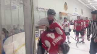 Phillip Danault vs Viktor Svedberg fight