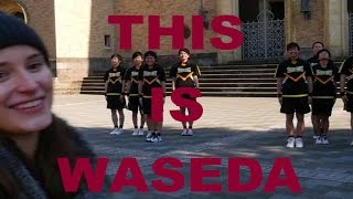 THIS IS WASEDA - The Shockers