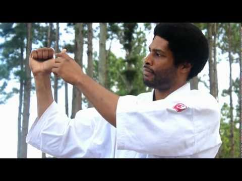 Kyokushin Karate Online Training: Basics Episode 1 Image 1