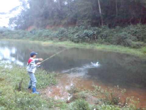 Pescaria De Traira Com Isca Artificial.