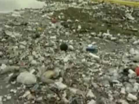 Nation's Most Polluted Beaches Reported