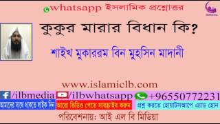 Download Sheikh Mokarom Bin Mohsin Madani  কুকুর মারার বিধান কি? 3Gp Mp4
