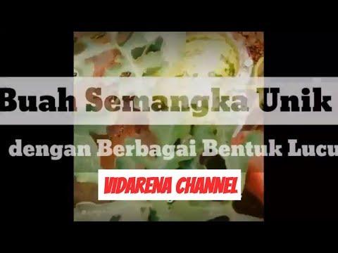 download lagu UNIK !! BUAH SEMANGKA BENTUK LUCU gratis
