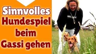 ?? Hundespiele ? Sinnvolle Hunde Spiele beim Gassi gehen - Stephanie Salostowitz ??