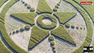 Círculos En Los Cultivos Misterio - Crop Circles Enigma