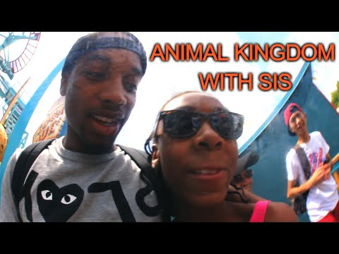 31. ANIMAL KINGDOM WITH SIS [#FCHW]