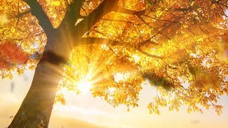 """Peaaceful music, Relaxing music, Instrumental music """"Golden Autumn Peace"""" by Tim Janis"""