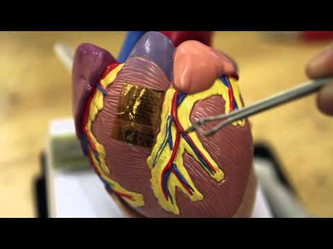 Science Nation - Electronic Tattoo Monitors Brain, Heart and Muscles